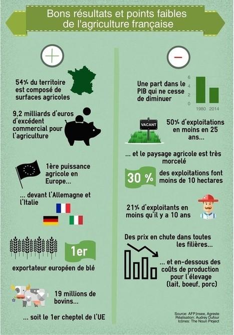 Forces et faiblesses de l'agriculture française - La Croix | Le Fil @gricole | Scoop.it
