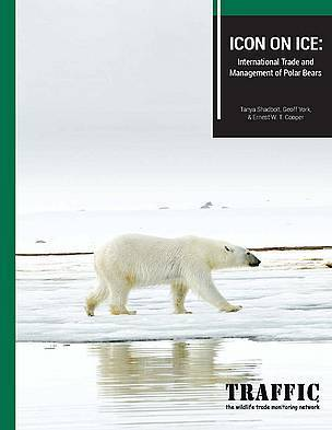 Wildlife trade experts say climate, not commercial trade, is primary threat to polar bears | Agua | Scoop.it