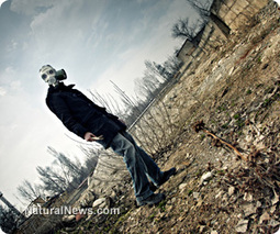 Fukushima director warns Britain it may be next   Let the EARTH provide!   Scoop.it