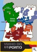 Vinhos: você sabia que...( 4 ) - 1a.temporada | Wine Lovers | Scoop.it