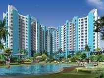 flats in noida | amrapali flats | Scoop.it