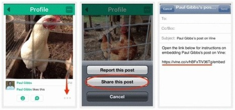 You Can Now Embed Vine Videos on Your WordPress Site - Small Business Trends | WordPress Web Dev | Scoop.it