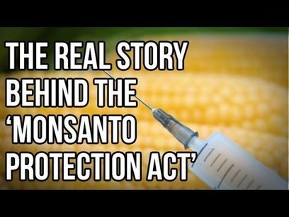 The Real Story Behind the 'Monsanto Protection Act' | The Alex Jones Channel | Scoop.it