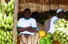 Burkina Faso - Pôle de croissance de Bagré : 108 investisseurs retenus | Questions de développement ... | Scoop.it