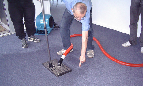 Tips To Deal With a Water Damage Carpet in Melbourne | Capital Facility Services | Scoop.it