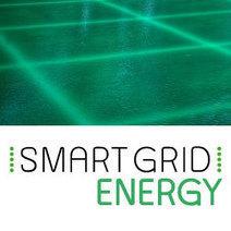 Les effacements de consommation arrivent (enfin) sur le marché de gros   Energy Market - Technology - Management   Scoop.it