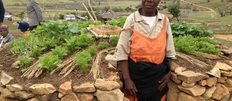 Improving food security for sustainable future in Lesotho | Climate Smart Agriculture | Scoop.it
