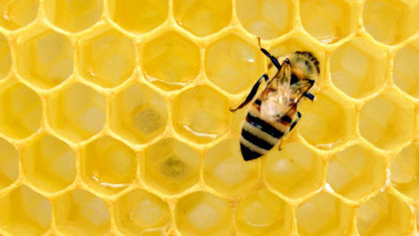 """Laser intended for Mars used to detect """"honey laundering"""" 