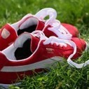 Puma Launches Line of Biodegradable Shoes & Clothes | EngineeringLessons | Scoop.it