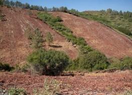 Stop Plans to Destroy 38 Million Acres of Habitat - ForceChange   World of Wonders   Scoop.it