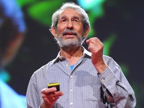 Geoffrey West: A matemática surpreendente de cidades e corporações | Trends & Design | Scoop.it