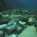 Les réseaux sociaux au service des océans | Chuchoteuse d'Alternatives | Scoop.it