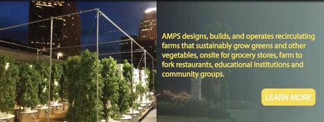 Aquaponic Modular Production Systems | DESIGN BUILD FARM | Vertical Farm - Food Factory | Scoop.it