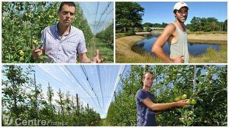 La sécheresse inquiète les pomiculteurs limousins | Agriculture en Dordogne | Scoop.it
