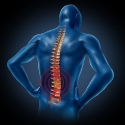 Low Back Pain: Getting Better Faster & Cheaper - results PHYSIOTHERAPY | Lower Back Pain | Scoop.it