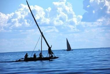Twitter / AnnThompson13: The dhows of the #Swahili Coast ... | My Funny Africa.. Bushwhacker anecdotes | Scoop.it