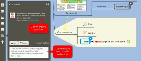 Mindomo : du mindmapping collaboratif en ligne exceptionnel | Animation Numérique de Territoire | Scoop.it