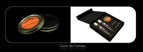 Caviar Bio de Montagne | Vin en Tube | Scoop.it