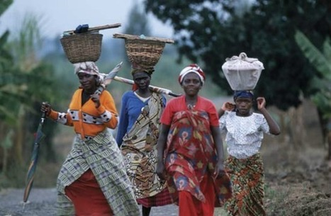 Gender Gap Costing Sub-Saharan Africa $95B Annually @Offshore stockbrokers | Africa : Commodity Bridgehead to Asia | Scoop.it