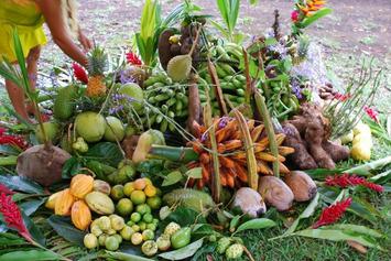 Levée des pléiades : le temps de l'abondance   Tahiti Infos   Océanie   Scoop.it