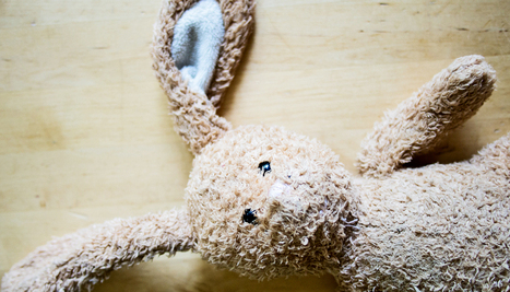 Biofilm bacteria linger on toys, books, cribs - Futurity | Nos amies les bactéries | Scoop.it