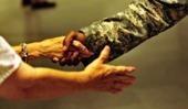Askerlik  Süresinin  Emekliliğe  Etkisi Var mıdır? | ihtiyaç kredisi | Scoop.it