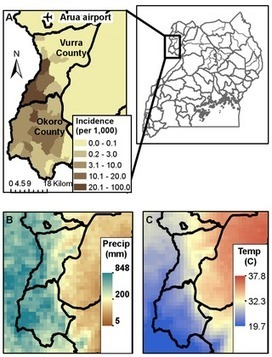 PLOS ONE: Improvement of Disease Prediction and Modeling through the Use of Meteorological Ensembles: Human Plague in Uganda | Virology and Bioinformatics from Virology.ca | Scoop.it