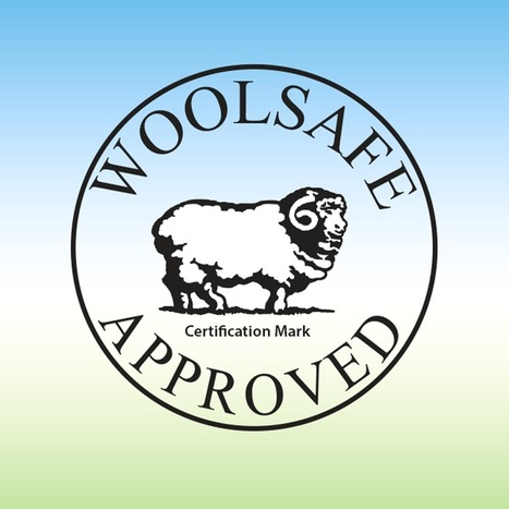 WoolSafe – Carpet Stain Cleaning Guide | Carpet & upholstery Cleaning | Scoop.it