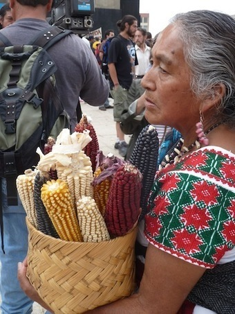 Thousands in Mexico Protest Monsanto by Throwing a Carnival of Corn | AID Vancouver | Scoop.it