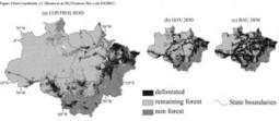 La deforestación de la Amazonia reducirá las cosechas   Medio ambiente   Scoop.it
