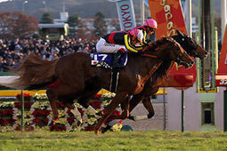 Filly Gentildonna trounces Orfevre in Japan Cup first via Horse Racing in Japan | Fran Jurga: Equestrian Sport News | Scoop.it