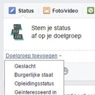 Hoe stem je een facebookbericht af op je doelpubliek? | Social Media & sociaal-cultureel werk | Scoop.it