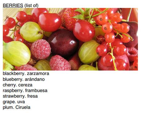 (ES) (EN) (PDF) - Glosario Bilingüe de Gastronomía y Alimentos | babel-linguistics.com (GoogleDrive) | Glossarissimo! | Scoop.it