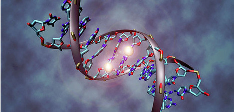Researchers discover new genetic brain disorder in humans | All things Genetic | Scoop.it