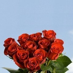 -1-   100 Beautiful Red Roses Next Day Overnight Delivery Global Rose | Same Day Delivery Flowers | Scoop.it