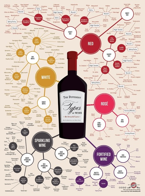 The Different Types of Wine Infographic | Vin, blogs, réseaux sociaux, partage, communauté Vinocamp France | Scoop.it