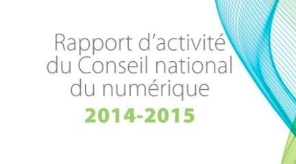 Rapport d'activité CNNum 2014-2015 | Médiations numérique | Scoop.it