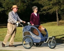 What's So Special about a Pet Stroller? | Pet Products Depot | Dog Strollers For Small Dogs | Scoop.it
