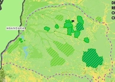 Bonobo Conservation Initiative | GarryRogers Biosphere News | Scoop.it