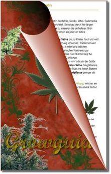 Subsistenzwirtschaft per Indoor Cannabis Anbau | Irierebel.com | Scoop.it
