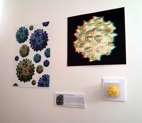 Miniature to Massive: 3D Printed Cells, Viruses and Parasites Demystify Microbiology | Makers and Future Electronics | Scoop.it