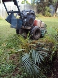 Price guide for stump grinding, tree removal pricing, No call out chargers for tree stump removal,cheap low cost stump grinding | Stump Grinding Guide in Dallas Ga | Scoop.it