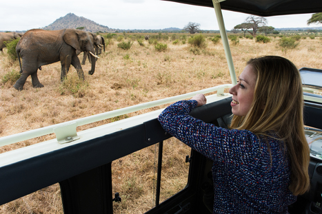 Chelsea Clinton: To protect Africa's elephants, stop the demand | Wildlife Trafficking: Who Does it? Allows it? | Scoop.it