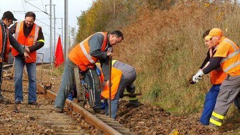 Création d'entreprise: les cheminots ne restent pas à quai | Les actus de Cyril | Scoop.it