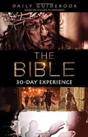 Bible Study Ideas: The Bible TV Series Study | Bible Study Ideas | Scoop.it