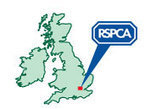 RSPCA Millbrook Animal Centre - Success stories | RSPCA | Scoop.it