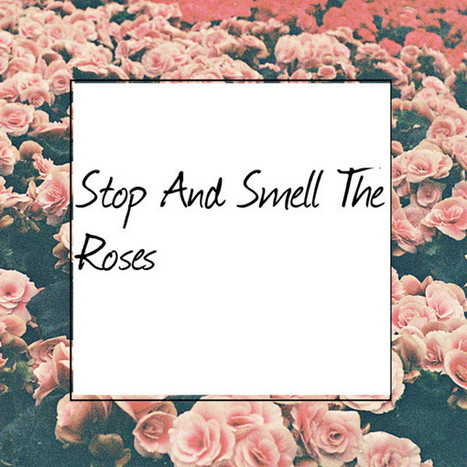 Intrepidity: Stop and Smell the Roses | Interests | Scoop.it