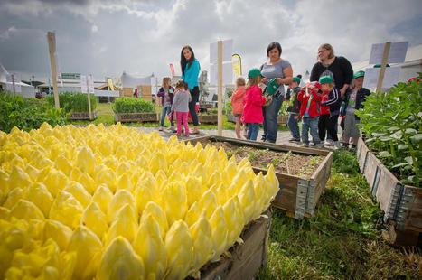 Terres en fête près d'Arras: l'agriculture régionale sous toutes ses ... - La Voix du Nord | CDI RAISMES - MA | Scoop.it