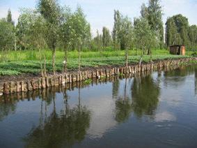 La resistencia de los pueblos agrícolas del DF . La técnica de siembra en chinampas sigue vigente.   Cultivos Hidropónicos   Scoop.it