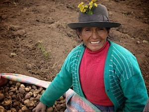 Research at 13,000 Feet: The Incan Agricultural Legacy | Bloghistosphère | Scoop.it